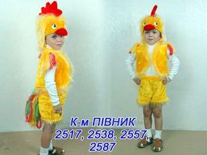 kostyum_petuha_malchika Новогодний костюм петушка. Фото и идеи