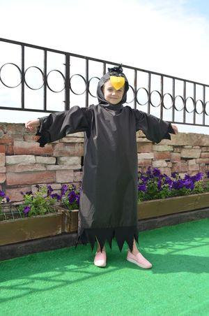 Новогодний костюм, ворона / Я - суперпупер