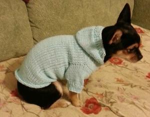 Одежда для собак вязать для начинающих