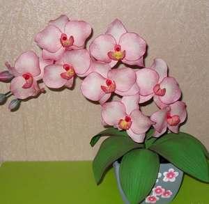 Цветок их фоамирана